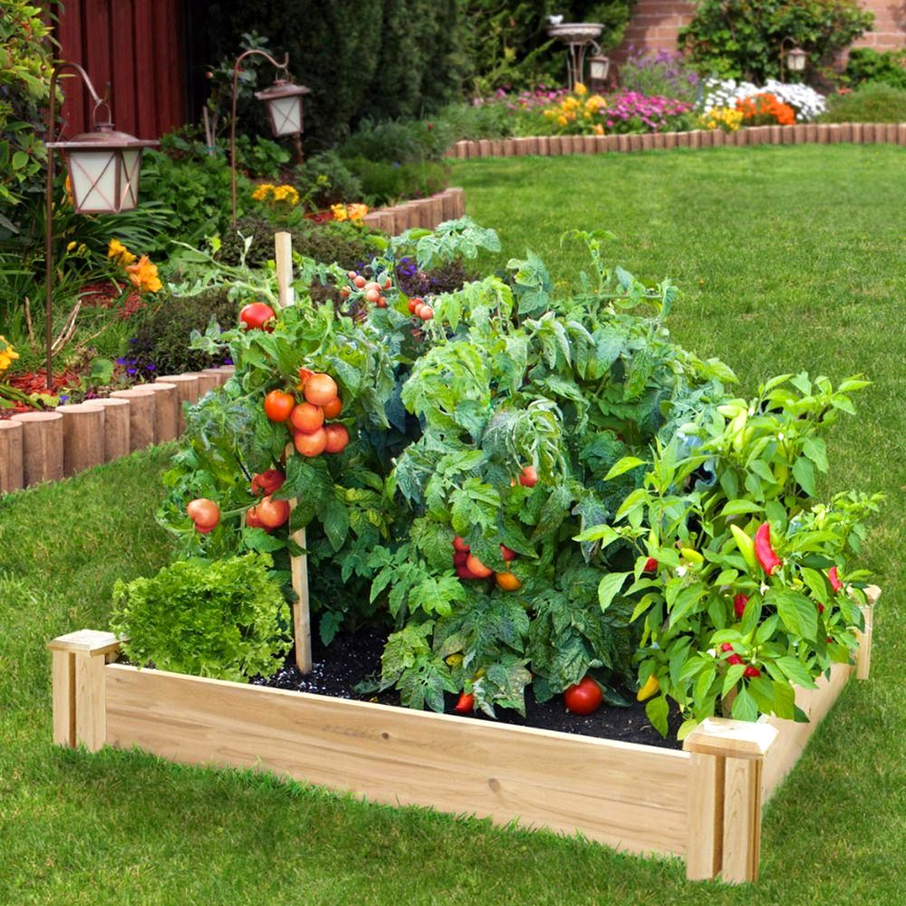 Create a family garden which makes you your parents and for Creating a vegetable garden