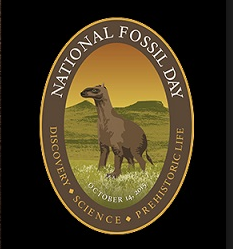 blog-national-fossil-day